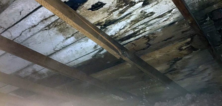 Cracked Attic Truss Rafter Moose Jaw Home Inspection